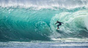 surf e merito